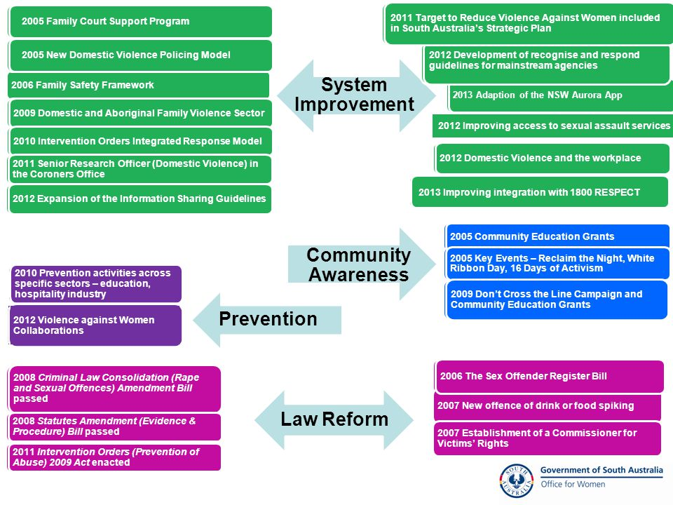 Over 24 specific initiatives since launch in 2005 Initiatives aimed at system improvement, law reform and primary prevention Aims Ensure consistent responses across the State Build a state that sees VAW as everyone's business Prevent violence against women before it occurs