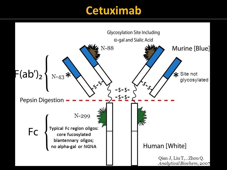 Cetuximab ** Site not glycosylated N-88 N-43 N-299 Qian J, Liu T,…Zhou Q.
