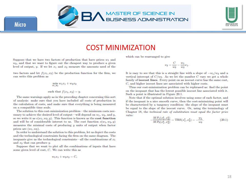 Micro 18 COST MINIMIZATION