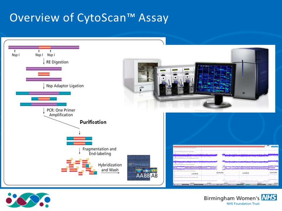 Overview of CytoScan™ Assay