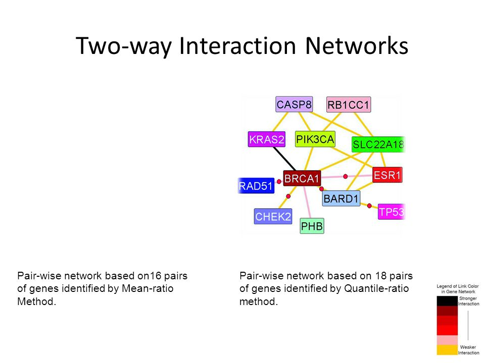 Two-way Interaction Networks Pair-wise network based on16 pairs of genes identified by Mean-ratio Method. Pair-wise network based on 18 pairs of genes