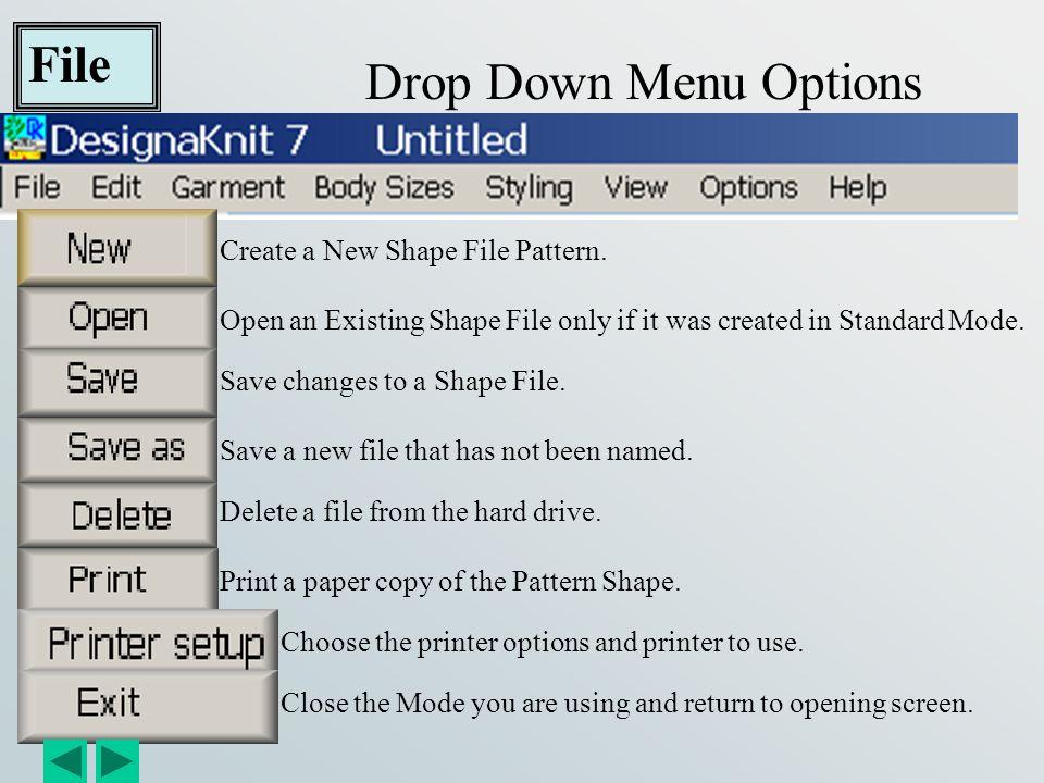 File Options