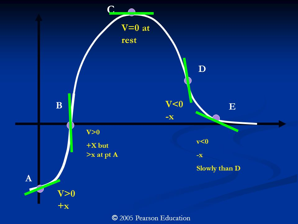 A V>0 +x B V>0 +X but >x at pt A C V=0 at rest D V<0 -x E v<0 -x Slowly than D © 2005 Pearson Education