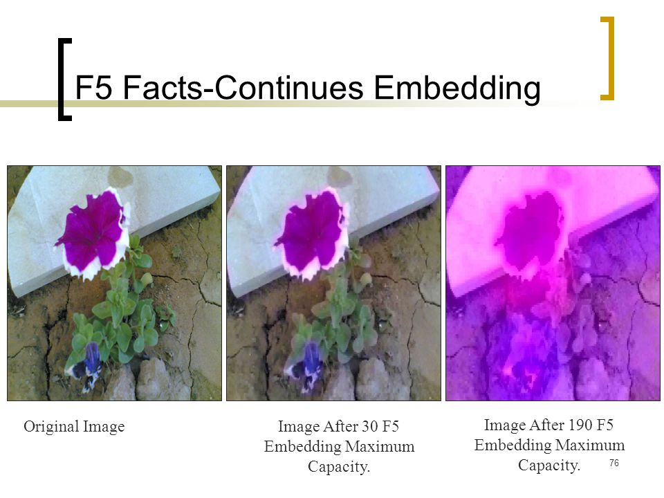 76 F5 Facts-Continues Embedding Original ImageImage After 30 F5 Embedding Maximum Capacity. Image After 190 F5 Embedding Maximum Capacity.
