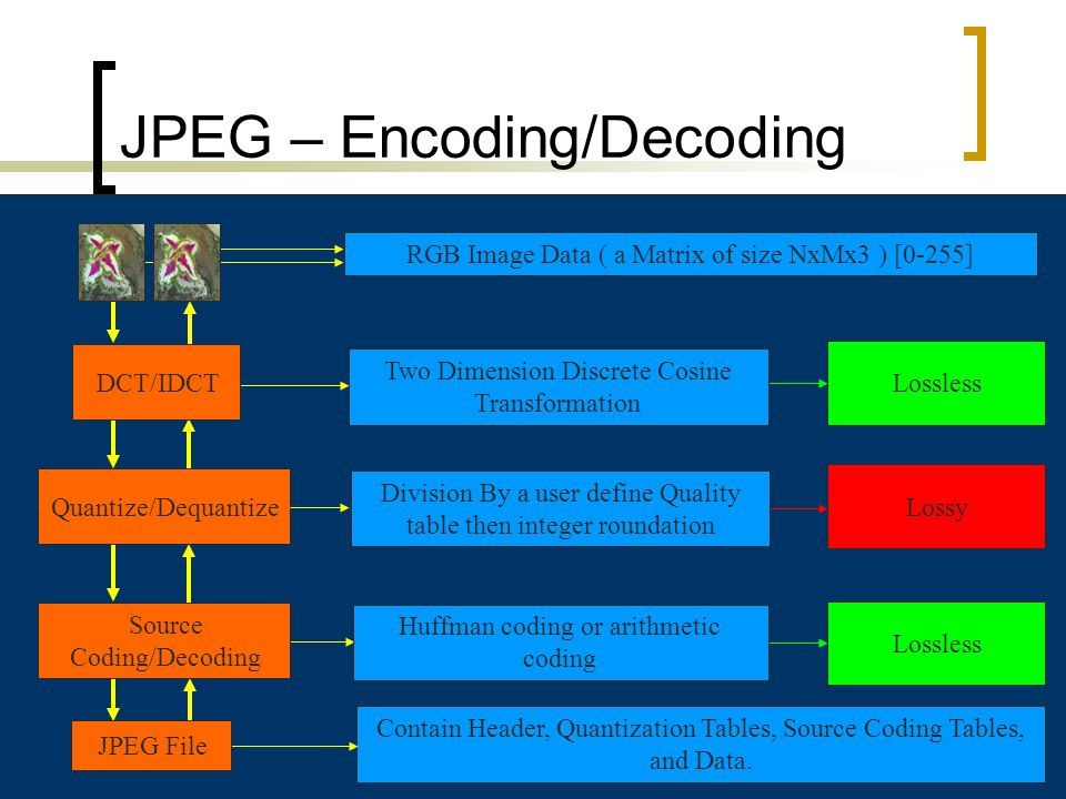 8 JPEG – Encoding/Decoding RGB Image Data ( a Matrix of size NxMx3 ) [0-255] Contain Header, Quantization Tables, Source Coding Tables, and Data. Quan