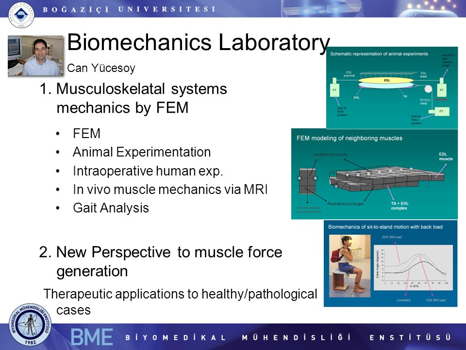 Biomechanics Laboratory 1. Musculoskelatal systems mechanics by FEM 2. New Perspective to muscle force generation Therapeutic applications to healthy/