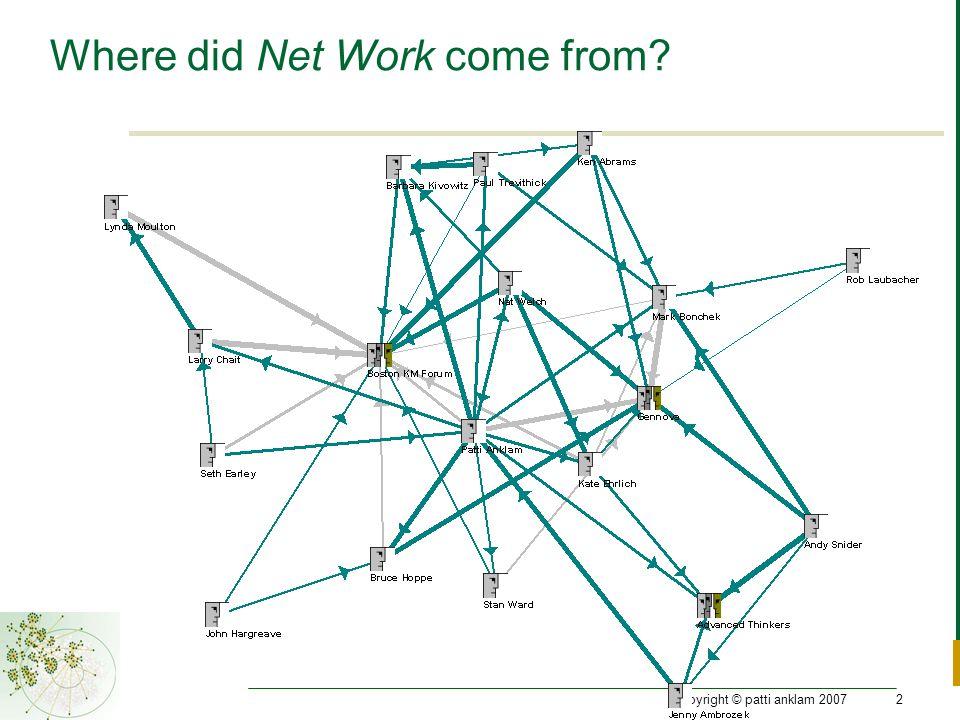 copyright © patti anklam 200713 Every network has a Purpose…
