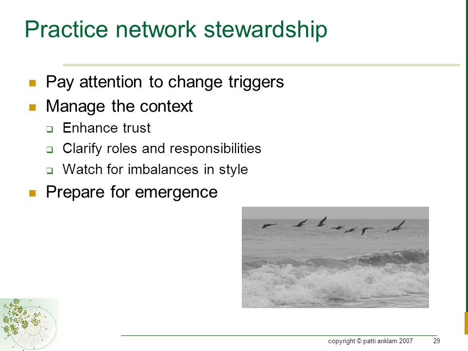 copyright © patti anklam 200729 Practice network stewardship Pay attention to change triggers Manage the context  Enhance trust  Clarify roles and responsibilities  Watch for imbalances in style Prepare for emergence
