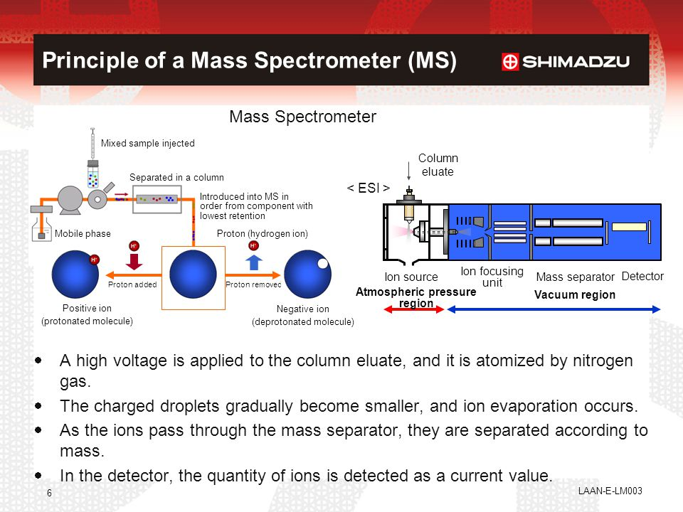 6 Principle of a Mass Spectrometer (MS) Mass Spectrometer  A high voltage is applied to the column eluate, and it is atomized by nitrogen gas.  The