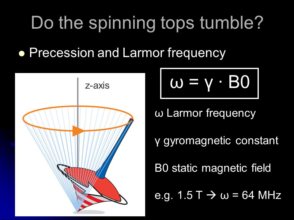Do the spinning tops tumble? Precession and Larmor frequency z-axis ω = γ · B0 ω Larmor frequency γ gyromagnetic constant B0 static magnetic field e.g