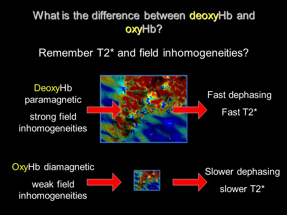 What is the difference between deoxyHb and oxyHb? Remember T2* and field inhomogeneities? DeoxyHb paramagnetic strong field inhomogeneities OxyHb diam