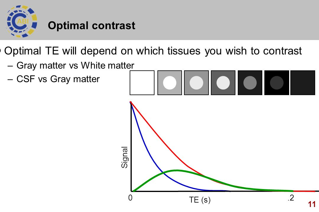 11 Optimal contrast Optimal TE will depend on which tissues you wish to contrast –Gray matter vs White matter –CSF vs Gray matter Signal TE (s) 0.2