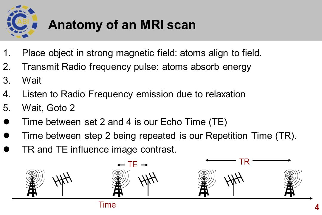 4 Anatomy of an MRI scan 1.Place object in strong magnetic field: atoms align to field. 2.Transmit Radio frequency pulse: atoms absorb energy 3.Wait 4