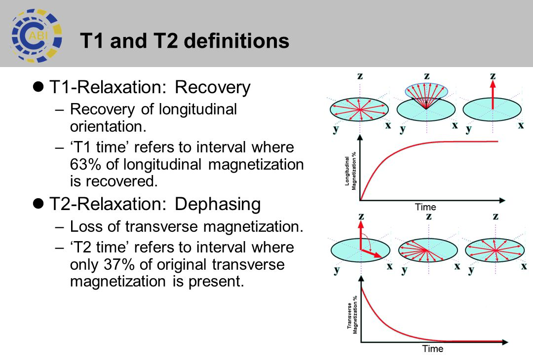 5 T1 and T2 definitions T1-Relaxation: Recovery –Recovery of longitudinal orientation. –'T1 time' refers to interval where 63% of longitudinal magneti