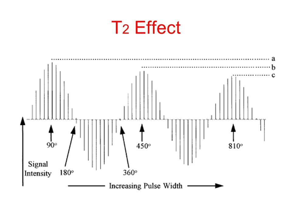 T 2 Effect