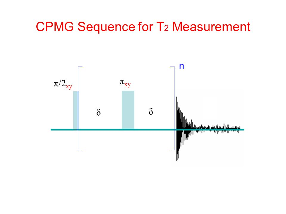CPMG Sequence for T 2 Measurement δ δ π xy π/2 xy n