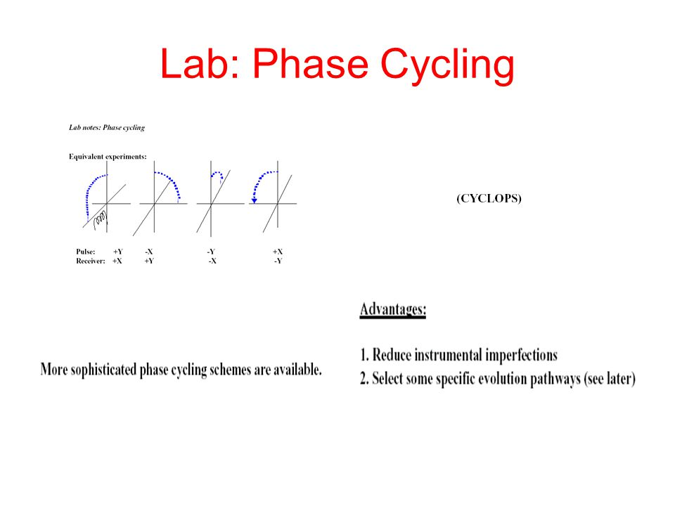 Lab: Phase Cycling