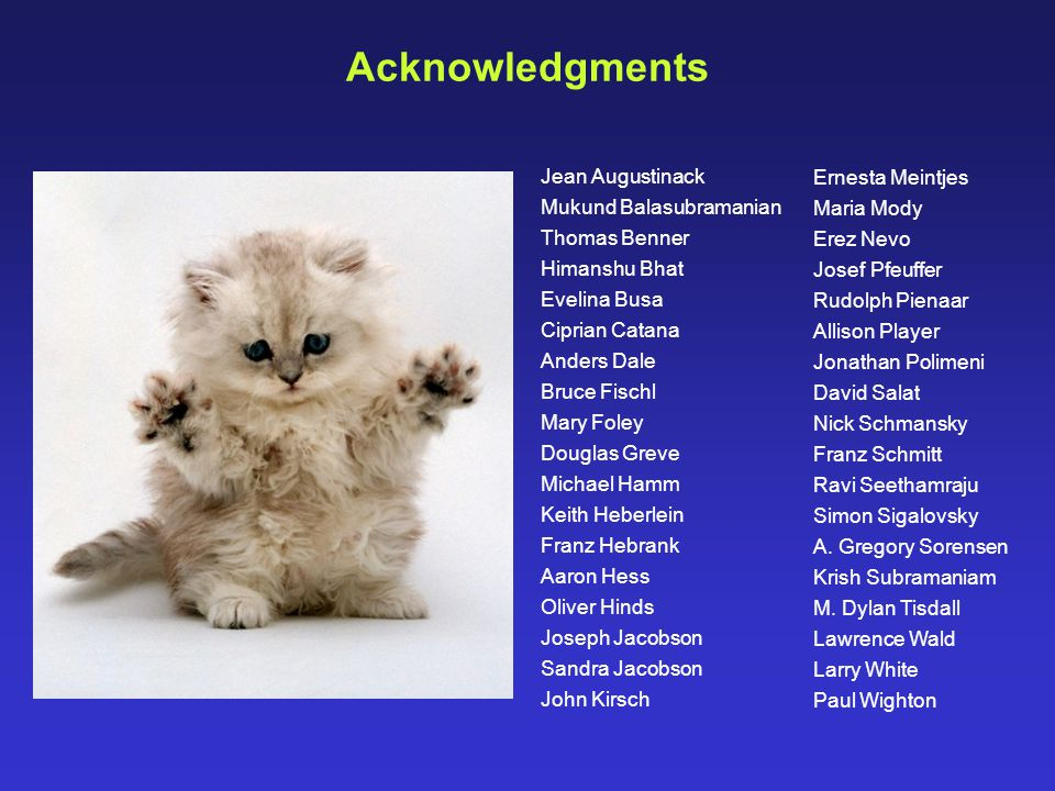 Acknowledgments Jean Augustinack Mukund Balasubramanian Thomas Benner Himanshu Bhat Evelina Busa Ciprian Catana Anders Dale Bruce Fischl Mary Foley Do