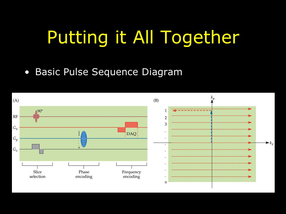 Putting it All Together Basic Pulse Sequence Diagram