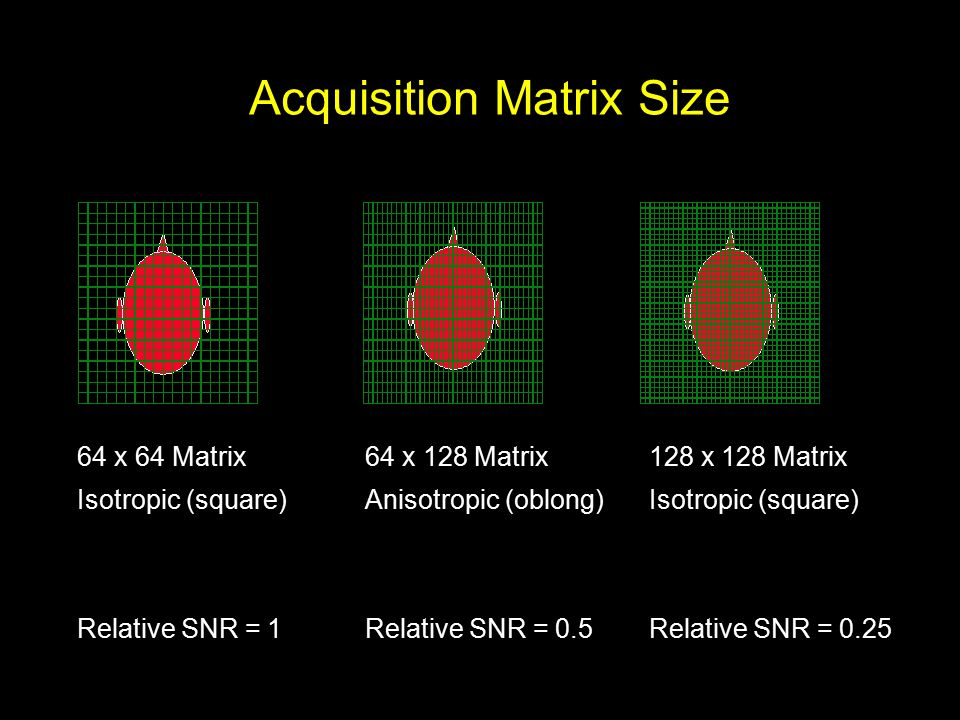 Acquisition Matrix Size 64 x 64 Matrix Isotropic (square) Relative SNR = 1 64 x 128 Matrix Anisotropic (oblong) Relative SNR = 0.5 128 x 128 Matrix Isotropic (square) Relative SNR = 0.25