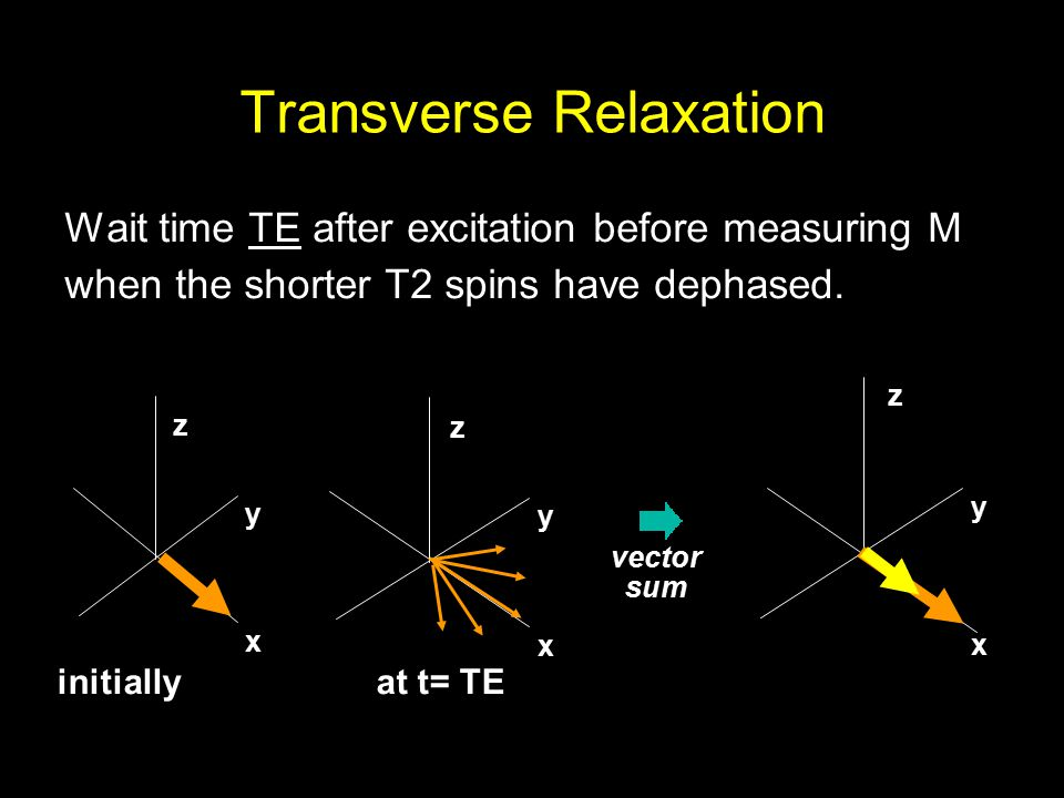 Transverse Relaxation Wait time TE after excitation before measuring M when the shorter T2 spins have dephased.