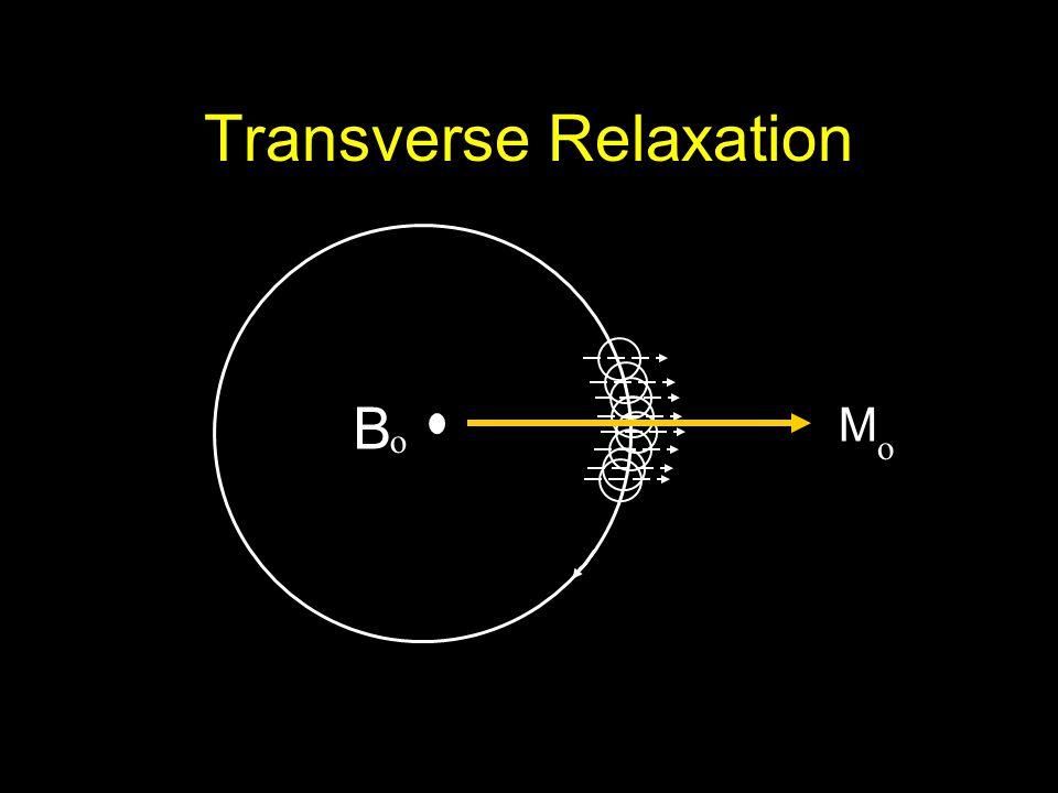 Transverse Relaxation M o B o