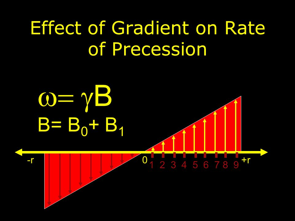  B B= B 0 + B 1 +r0-r Effect of Gradient on Rate of Precession