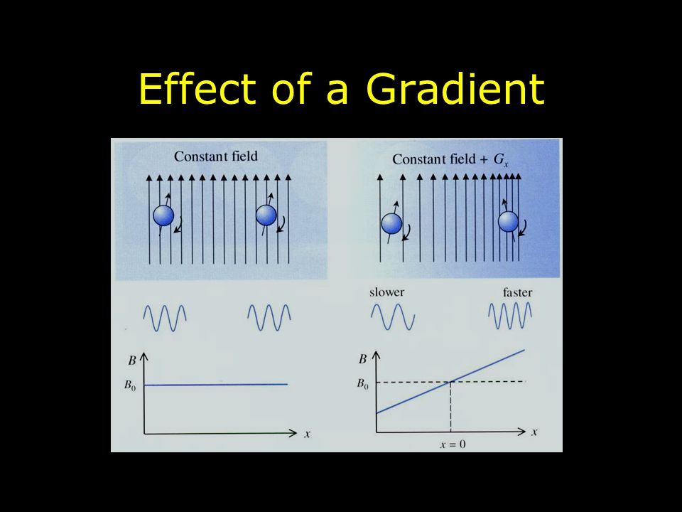Effect of a Gradient