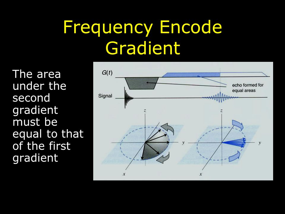 Frequency Encode Gradient The area under the second gradient must be equal to that of the first gradient