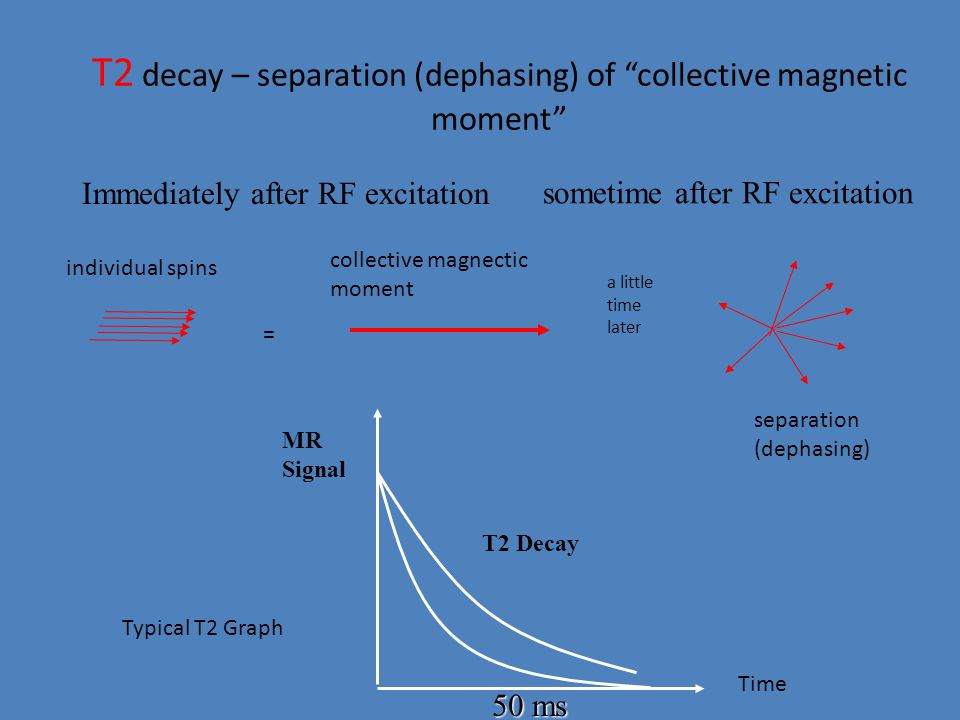 "T2 decay – separation (dephasing) of ""collective magnetic moment"" sometime after RF excitation Immediately after RF excitation = collective magnectic"