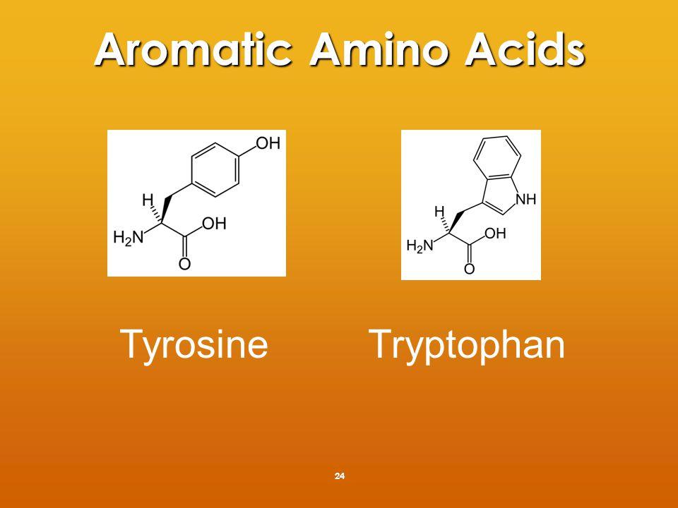 Tyrosine/Tryptophan 25