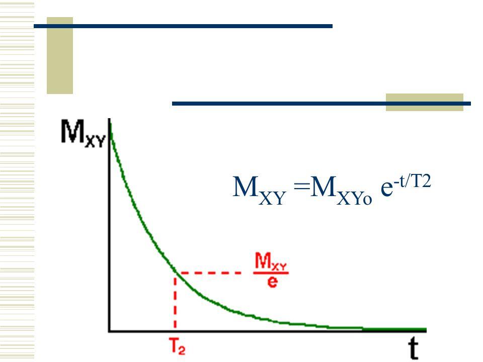 M XY =M XYo e -t/T2