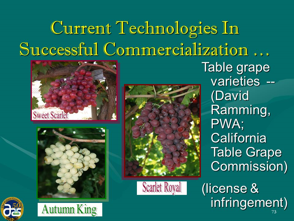 73 Table grape varieties -- (David Ramming, PWA; California Table Grape Commission) (license & infringement) Current Technologies In Successful Commercialization …