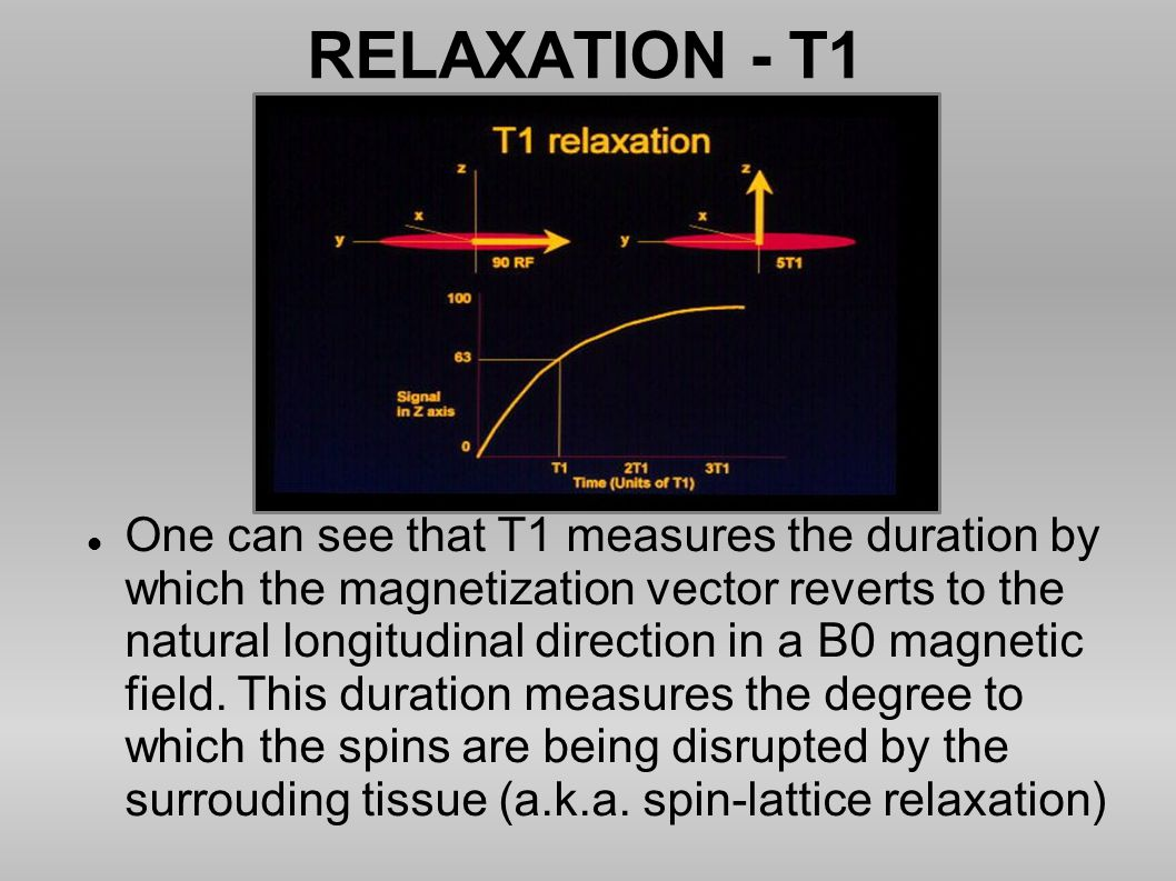 RELAXATION - T1 One can see that T1 measures the duration by which the magnetization vector reverts to the natural longitudinal direction in a B0 magn