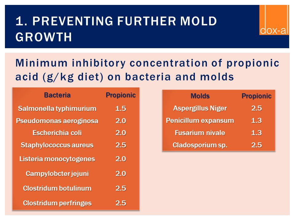 Minimum inhibitory concentration of propionic acid (g/kg diet) on bacteria and molds 1. PREVENTING FURTHER MOLD GROWTH