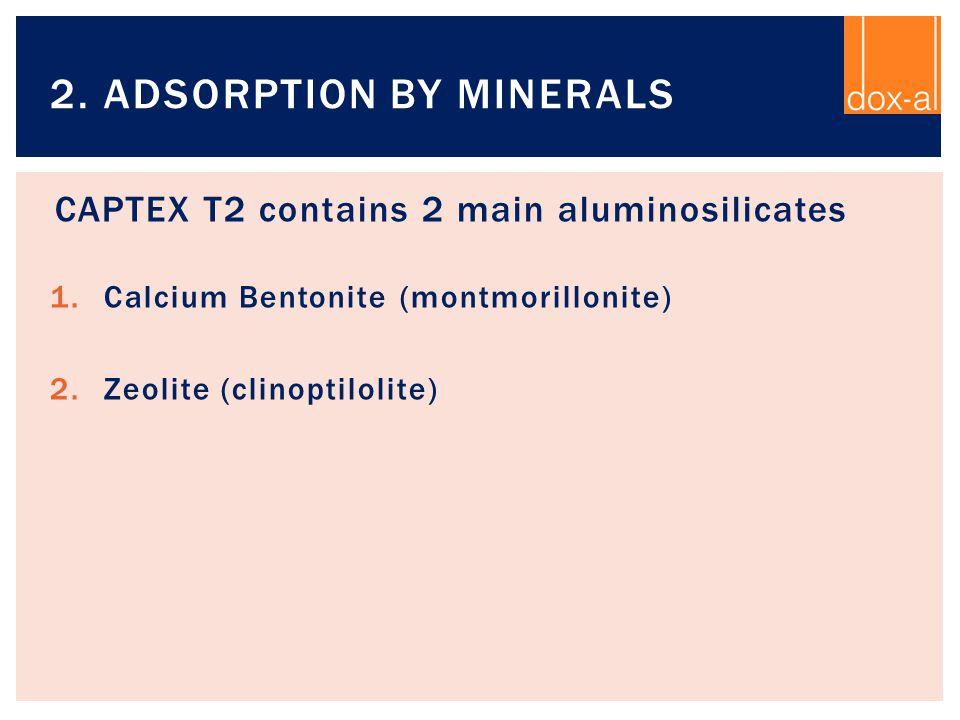 CAPTEX T2 contains 2 main aluminosilicates 1.Calcium Bentonite (montmorillonite) 2.Zeolite (clinoptilolite) 2. ADSORPTION BY MINERALS
