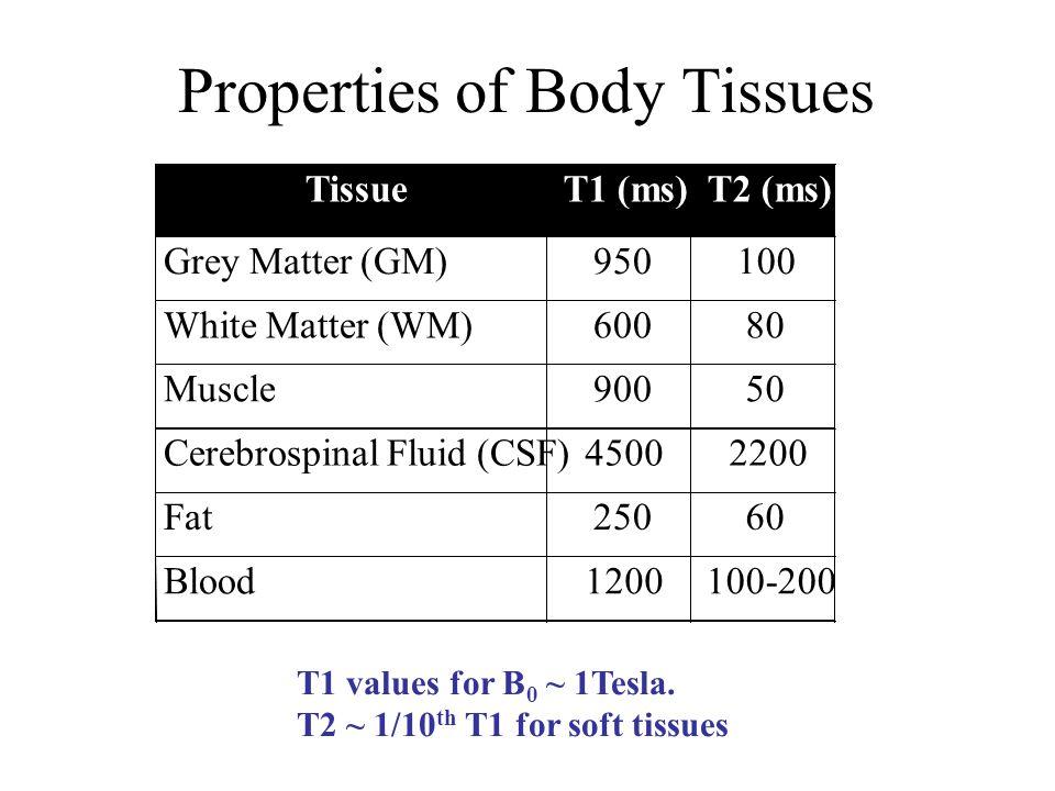 Properties of Body Tissues TissueT1 (ms)T2 (ms) Grey Matter (GM)950100 White Matter (WM)60080 Muscle90050 Cerebrospinal Fluid (CSF)45002200 Fat25060 B