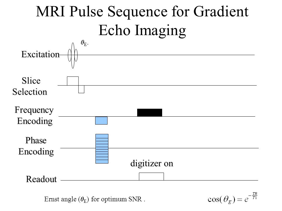 MRI Pulse Sequence for Gradient Echo Imaging digitizer on Excitation Slice SliceSelection Frequency Encoding Encoding Phase Phase Encoding Encoding Re