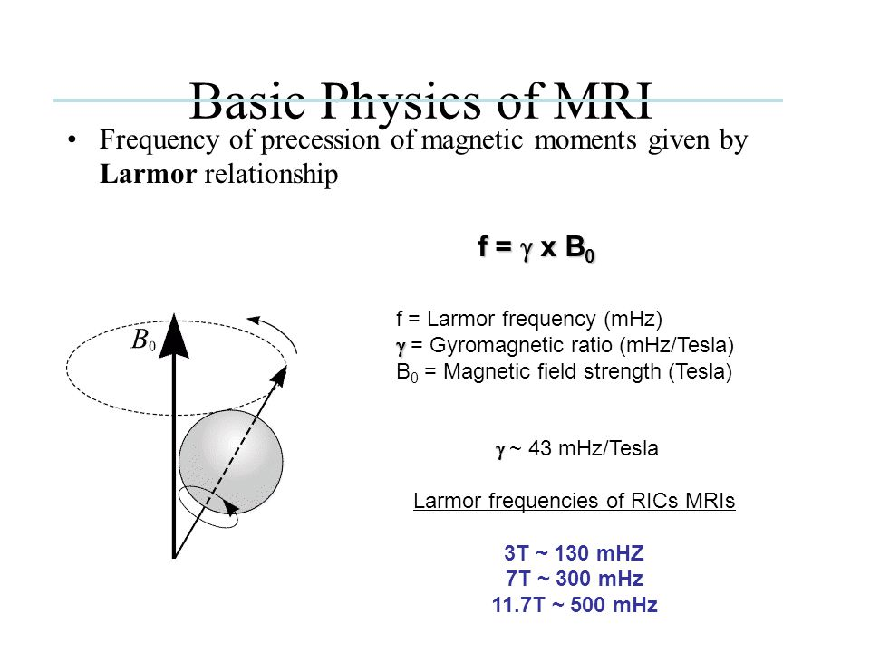 NMRable Nuclei Basic Physics of MRI  Body 1 H content is high due to water (>67%)  Hydrogen protons in mobile water are primary source of signals in fMRI and aMRI