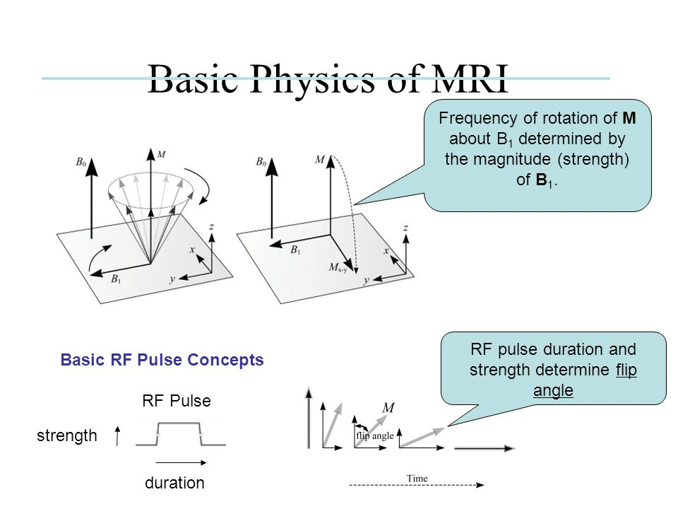 Basic Physics of MRI FID magnitude decays in an exponential manner with a time constant T2.
