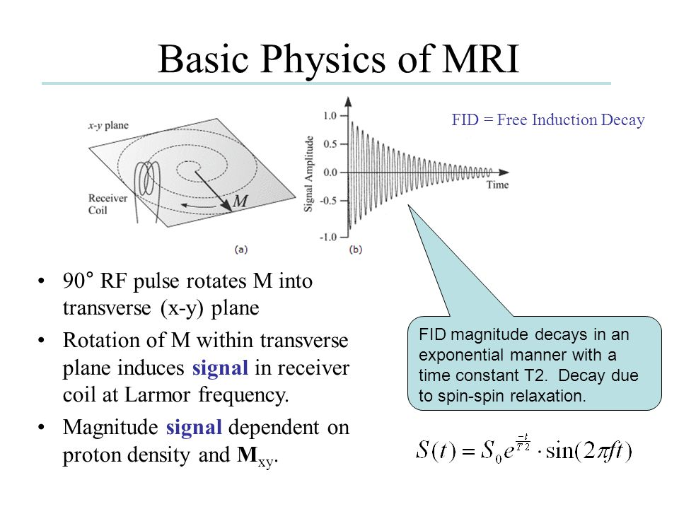 Basic Physics of MRI FID magnitude decays in an exponential manner with a time constant T2. Decay due to spin-spin relaxation. 90° RF pulse rotates M