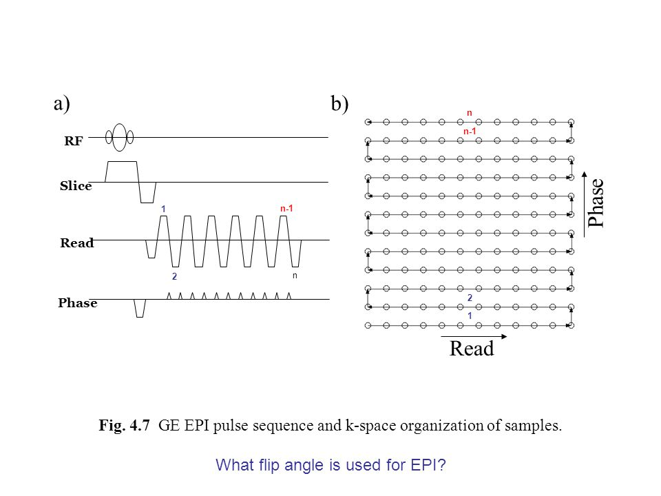 Fig. 4.7 GE EPI pulse sequence and k-space organization of samples. RF Slice Read Phase a) Read Phase b) 1 2 n n-1 1 2 n What flip angle is used for E