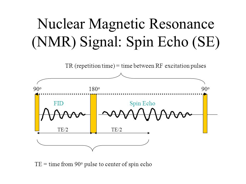 Nuclear Magnetic Resonance (NMR) Signal: Spin Echo (SE) TE/2 90 o TR (repetition time) = time between RF excitation pulses 90 o 180 o FIDSpin Echo TE