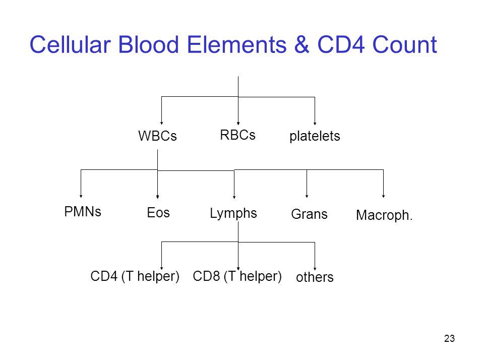 23 RBCs plateletsWBCs PMNs Eos Lymphs Grans Macroph. CD4 (T helper)CD8 (T helper) others Cellular Blood Elements & CD4 Count