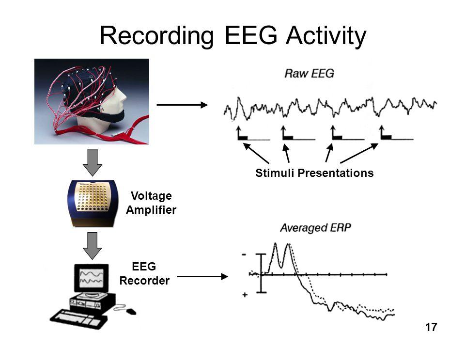 17 Recording EEG Activity Voltage Amplifier EEG Recorder Stimuli Presentations