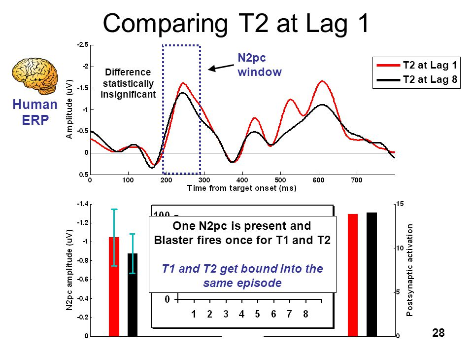 28 Comparing T2 at Lag 1 T2 at Lag 1 T2 at Lag 8 N2pc window Difference statistically insignificant Human ERP Blaster ST 2 Human ERP One N2pc is prese