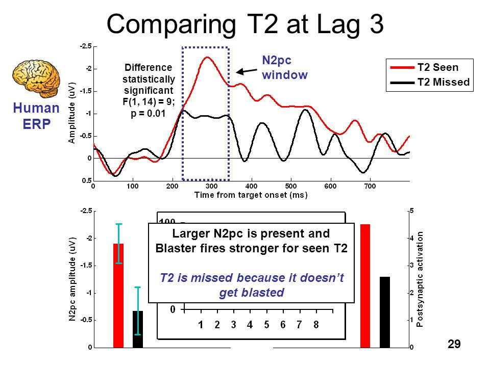 29 Comparing T2 at Lag 3 T2 Seen T2 Missed Human ERP N2pc window Difference statistically significant F(1, 14) = 9; p = 0.01 Blaster ST 2 Human ERP La