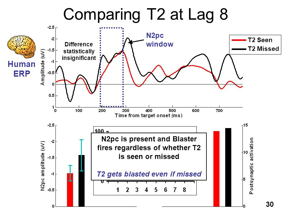30 Comparing T2 at Lag 8 T2 Seen T2 Missed Human ERP Blaster ST 2 Human ERP N2pc window Difference statistically insignificant N2pc is present and Bla
