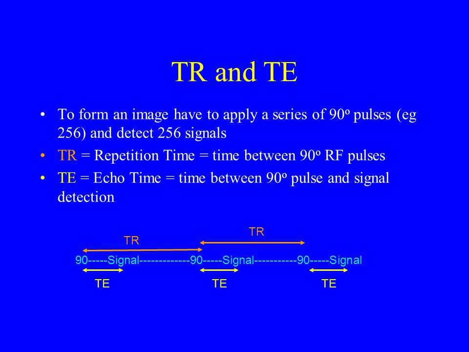 Image Contrast Depends on the pulse sequence timings used (TR/TE) 3 main types of contrast –T1 weighted –T2 weighted –Proton density weighted Explain