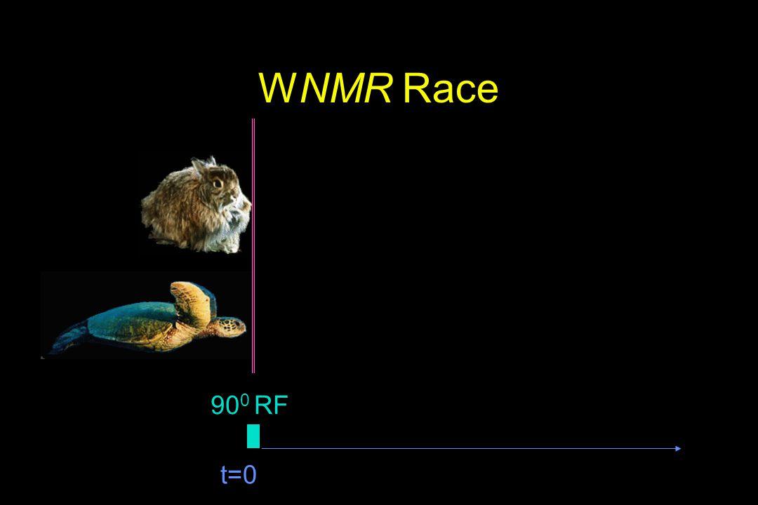 WNMR Race t=0 90 0 RF